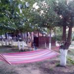 Гамак в тени деревьев